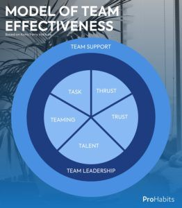 team effectiveness in the workplace